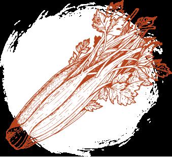 celery graphic