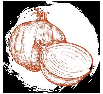 onion graphic